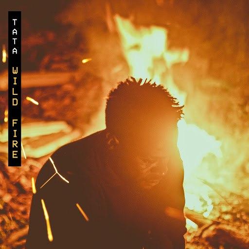 Tata альбом Wild Fire
