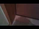 откосы из МДФ панелей на входную дверь.