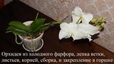 Орхидея из холодного фарфора, лепка бутонов, листьев, корней, сборка ветки, и закрепление в горшке