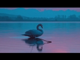 Светлана Малова - Люди, как птицы (клип)