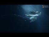 Achillea ( Jens Gad ) - El Alma Herida