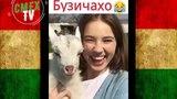 Таджикские приколы VINE - 2018 #62 выпуск ПРИКОЛИ ТОЧИК