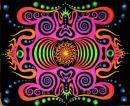 Личный фотоальбом Enigma Presents