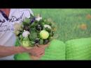 """Съедобные букеты в Ярославле. Студия фруктовой флористики """"Вершки и корешки"""""""