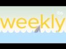 IBS Weekly #2