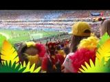 Чемпионат мира 2014 г.  Часть 7