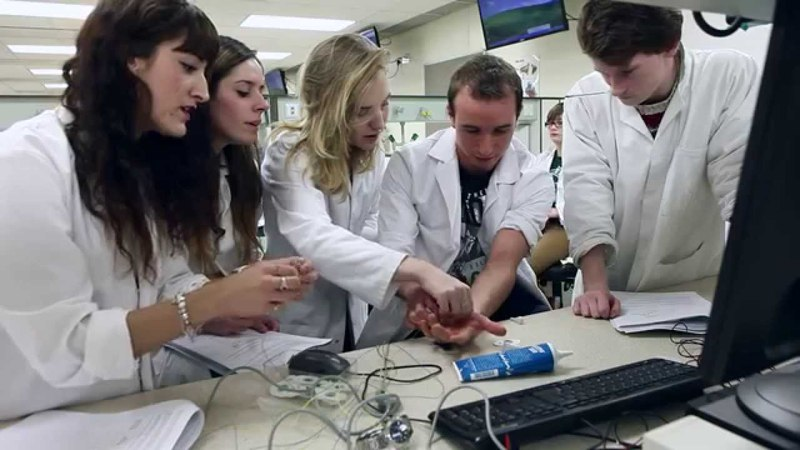 Biomedical science at the University of Sheffield