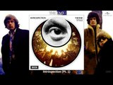 The End - Introspection Pt. 1 (Stereo - Remastered) Psychedelic Rock (1969)