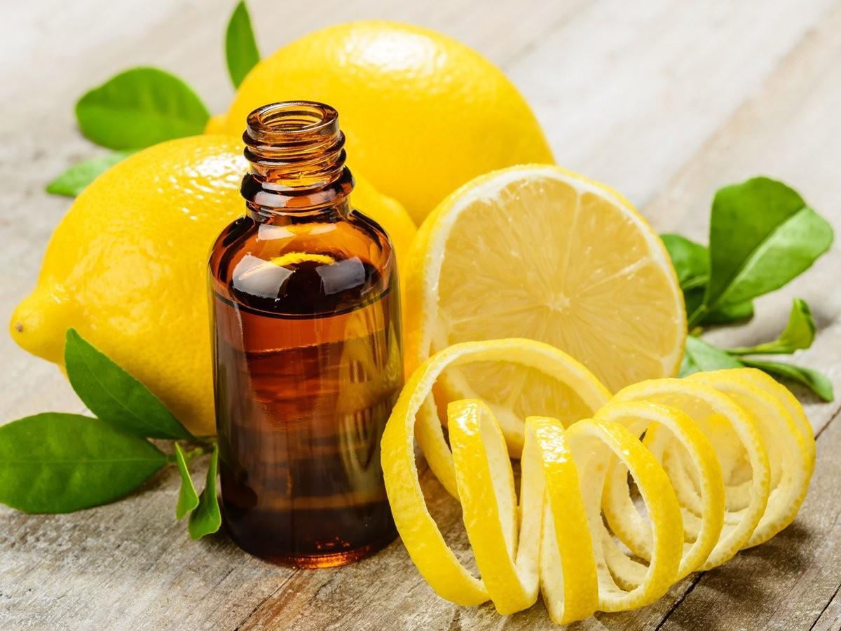 Какова польза лимонного бальзама?
