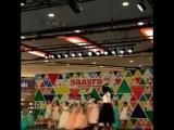 Цветочный бал в Радуге