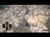 Dark Souls 3 Кнут Ведьмины волосы ПвП АРЕНА Возращение Будулая