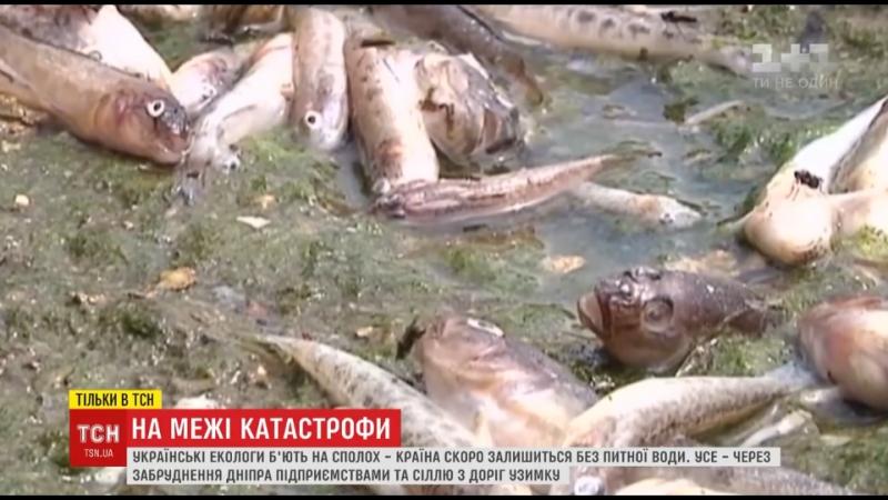 Наближення катастрофи екологи заявили про критичне забруднення Дніпра