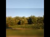 katrin_fink video