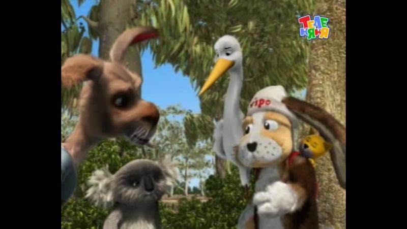 Випо путешественник Австралия Коала и кенгуру Australia The Koala and the Kangaroo