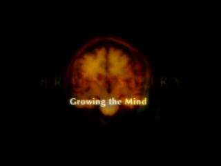 5. Развитие мышления / Growing the Mind (BBC: Тайны мозга / BBC: Brain Story) 2000