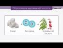 1. Вводный инструктаж по ТБ. Органическая химия-химия соединений углерода