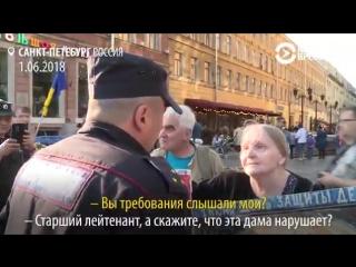господа полицейские против старушки