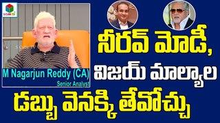 How To Get Back Nirav Modi, Vijay Malya's Money To India Punjab National Bank Scam Narendra Modi