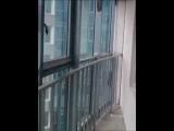 ЖК Князь Александр Невский квартира № 653