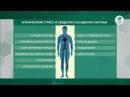 Здравствуйте  Хронический стресс: сердце и нервы