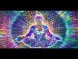 Системы здоровья. Гармонизация энергий. Часть 2. Марина Бутынская