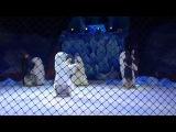 Белые медведи Юлии Денисенко и Юрия Хохлова