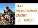 Дмитрий Мусихин снова в ТОПЕ. Разбанили канал В ПОИСКАХ ЗОЛОТА!