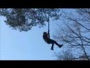 Дерево 15 04 18