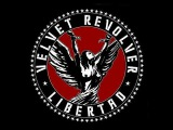 Velvet Revolver - I Wish You Were Here
