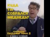 ПРИКЛЮЧЕНИЯ ПАДДИНГТОНА 2 - Куда собрался, медведь