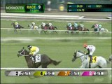 2016 UNITED NATIONS STAKES G1 WORLD APPROVAL