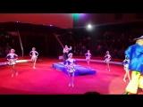 ***КАТЮША*** шоу балет. Морячки. Пермский государственный цирк.#катюшашоубалет#артистыпермт#цирк#морячки#шоубалетпермь#