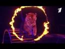 Шоу братьев Запашных «Эмоци и...» в Цирке на Фонтанке
