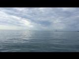 Морская прогулка на яхте 2018г.