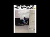 Instamusor Чем занимается твой друг в зале?!)