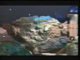Radiorama - Aliens (Promo Video)