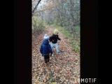 Прогулка по лесу 🍁🍂🍃