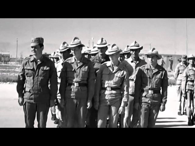 350 й гв пдп Хроника афганской войны