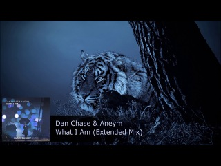 Dan Chase & Aneym - What I Am (Extended Mix)