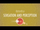 Sensation Perception - Crash Course Psychology 5