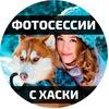 Фотосессия с хаски. Казань