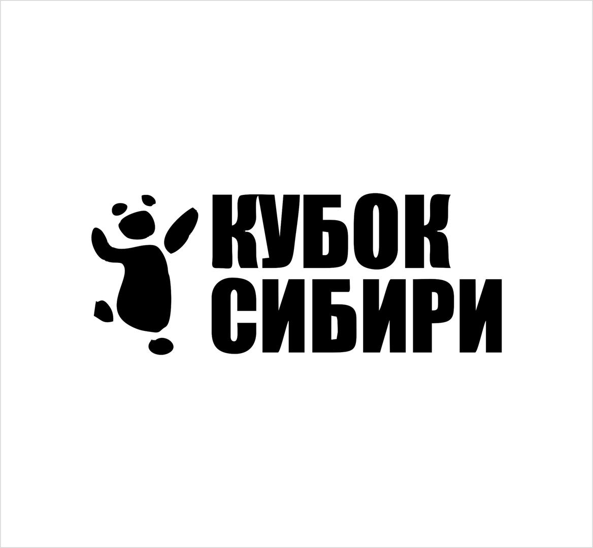 Афиша Омск Кубок Сибири 2019 по танцам в стиле свинг Омск