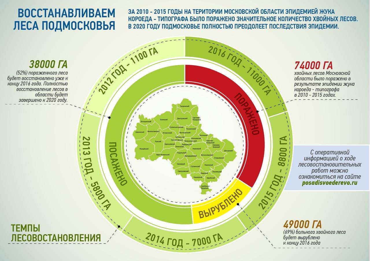 сколько процентов занимают леса