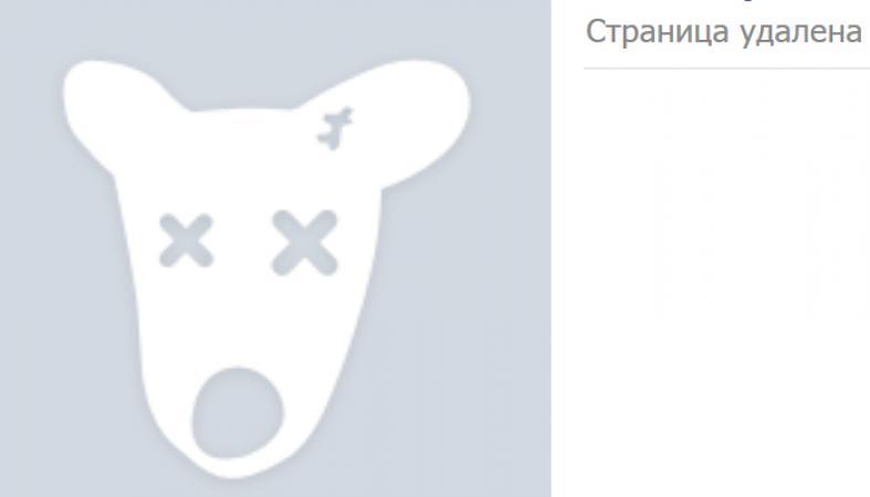 Картинка замороженной страницы в вк на аву