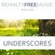 Royalty Free Music Maker - Anthill