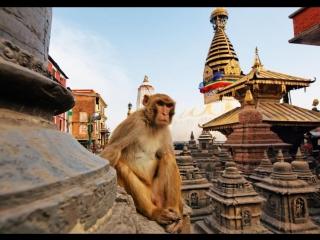 Nepal looks absolutely beautiful