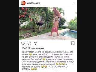 Сын Айзы Долматовой ударил собаку