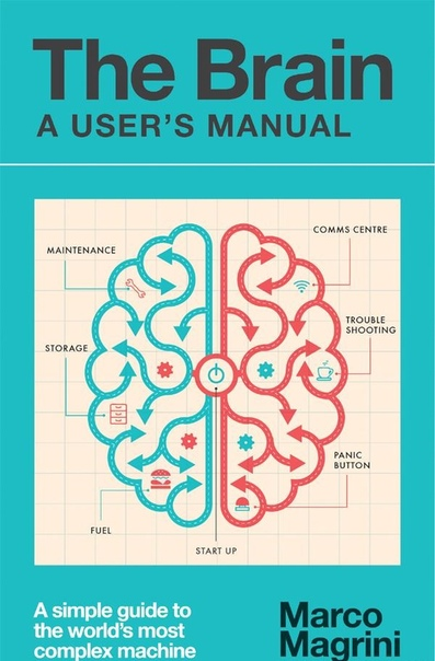 The Brain A User's Manual A simple guide to the world's most complex machine