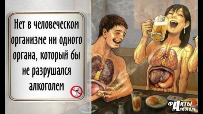 выписка стационара юмористические картинки о вреде алкоголя рады