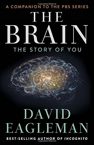 The Brain The Story of You by David Eagleman